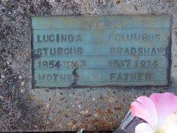 Lucinda Jane Cinia <i>Sturgis</i> Adkins