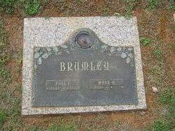 Paul Edward Brumley