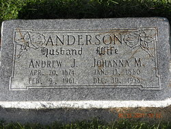 Andrew J Anderson