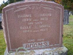 Darius Adams
