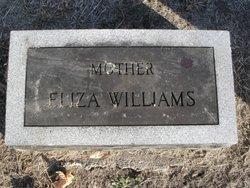 Eliza <i>Templin</i> Williams