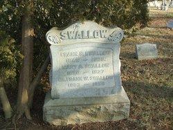 Dr Frank W Swallow