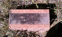 Marshell E Anderson