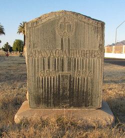 Atanacia <i>Santa Cruz</i> Hughes