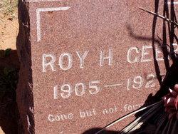 Roy Harvey Geer