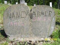Nancy <i>Amis</i> Baker