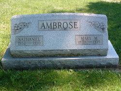 Mary M Ambrose