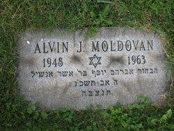 Alvin J Moldovan