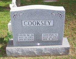 David M Cooksey, Jr