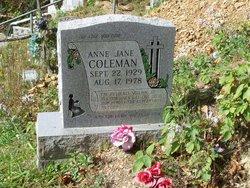 Anne Jane Coleman