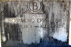 Rosamund <i>Epps</i> Bush