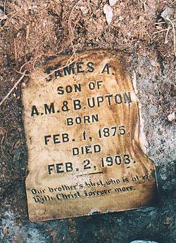 James A. Upton