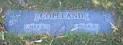 Alex E Copeland