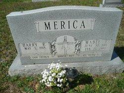 Harry Robert Merica
