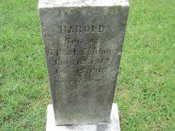 William Harold Adams
