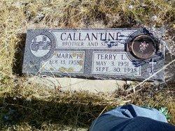 Terry L. <i>Callantine</i> Erdelyi