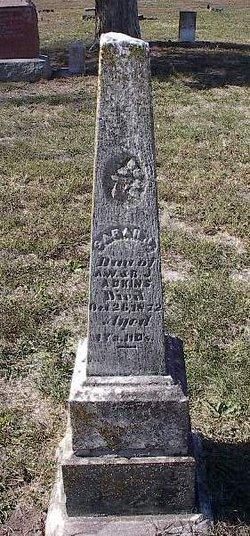 Sarah J. Adkins