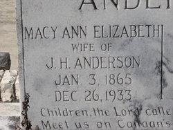 Macy Ann Elizabeth <i>DeLoach</i> Anderson