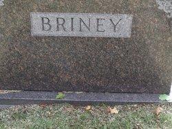 Adam L Briney