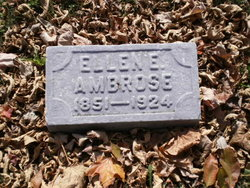 Ellen E Ambrose