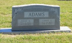 Rev David Monroe Adams