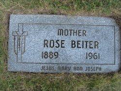 Rose <i>Brachmann</i> Beiter
