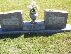 Charles Larkin Arant