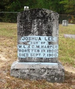 Joshua Lee Harper