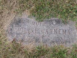 Caroline <i>Brunner</i> Bahneman