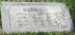 Dylan Banks