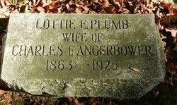 Lottie E <i>Plumb</i> Angerbower