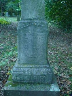 Chester Harrison Burr