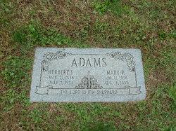 Mary P Adams