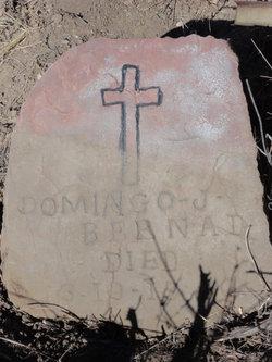 Domingo J Bernal
