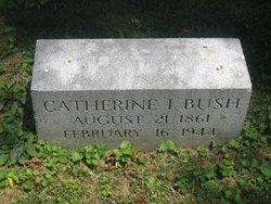 Catherine Idelia <i>Hawkins</i> Bush