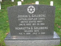 Joshua L Goldberg