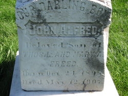 John Alfred Freed