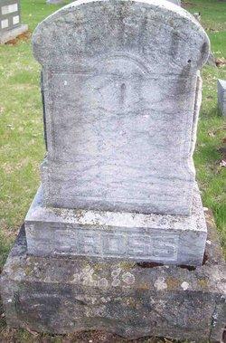 Sarah Jane <i>Morrison</i> Cross