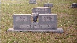 Fannie Cordelia Deal <i>Soward</i> Cheyne