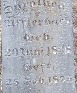 Audoretea Dorothea <i>Hahn</i> Afflerbach