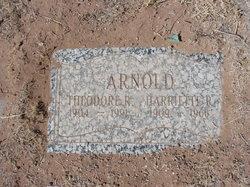 Theodore R Arnold