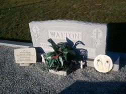 Connie <i>Hodge</i> Walton