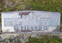 A. Z. Eiland