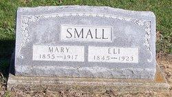 Mary Ann <i>Johnson</i> Small