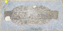 Harry W. Amon