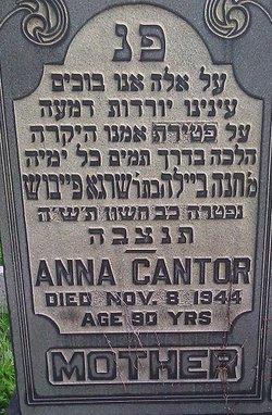 Anna Cantor