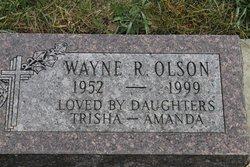 Wayne R Olson