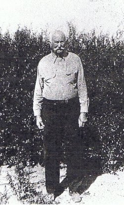 Otho Alexander McAliley
