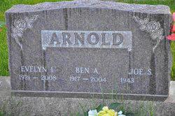 Evelyn Irene Arnold