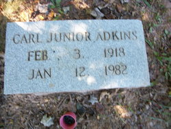 Carl Adkins, Jr